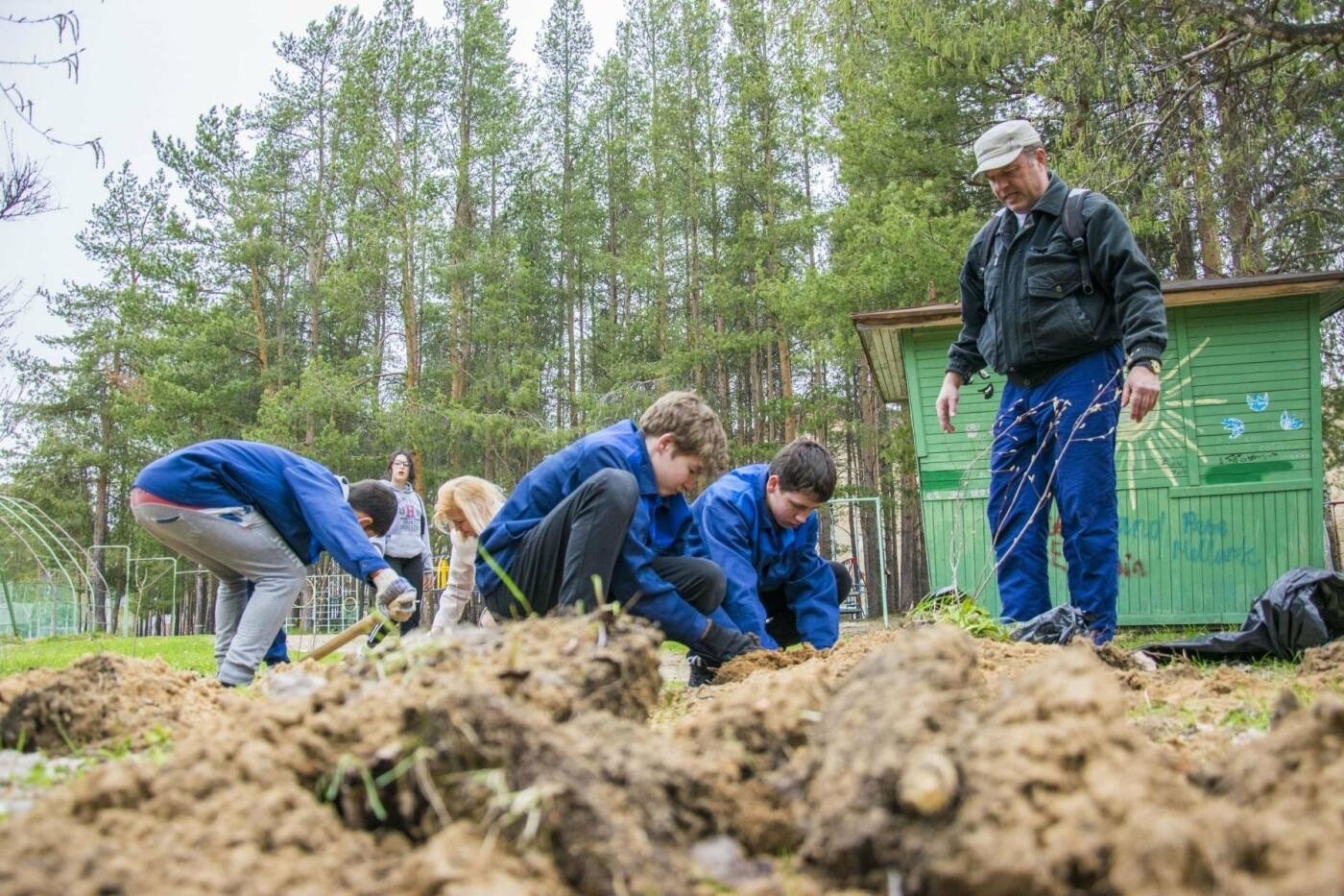 Добровольные озеленители, Фото предоставлено пресс-службой АМОГО «Ухта»